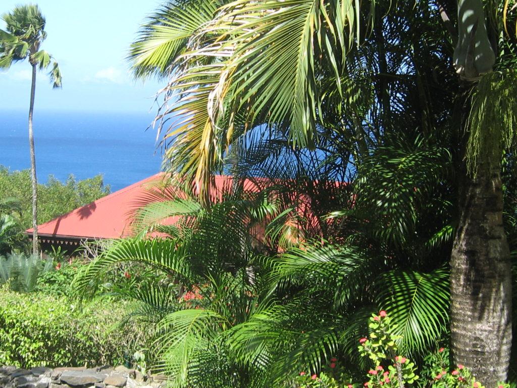 Vue sur Caraïbes